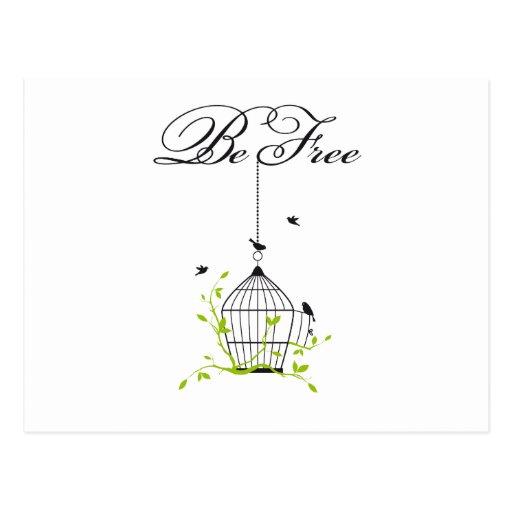 sea birdcage libre, abierto con los pájaros y rama tarjetas postales