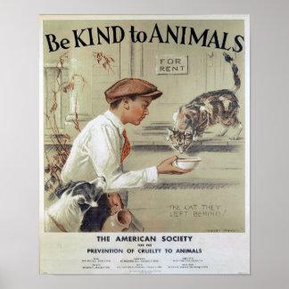Sea bueno con los Animal-Gatos Póster
