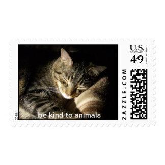 Sea bueno con los animales sello