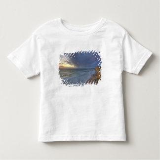 Sea cliffs catch days last light at Pomponi Toddler T-shirt