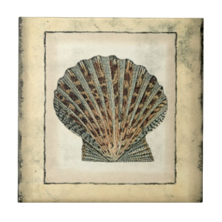 Sea Creatures by the Shore Ceramic Tile