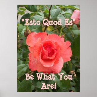 Sea cuál usted es poster con color de rosa rosado