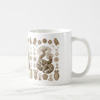 Sea Cucumbers Mugs