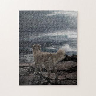 Sea Dog Jigsaw Puzzle