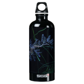 Sea Dragon Aluminum Water Bottle