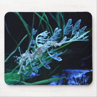 Sea Dragon Mousepad