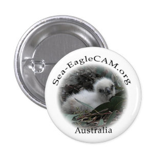 Sea-Eagle Hatchling Button