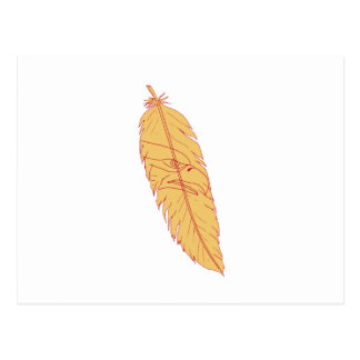 Sea Eagle Head Inside Feather Drawing Postcard
