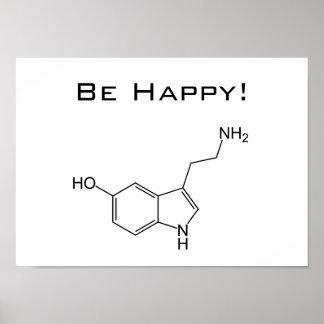 ¡Sea feliz! Poster de la serotonina