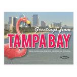 Sea Floridian - postal de Tampa Bay