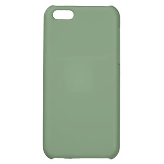 Sea Foam Green 4 Cover For iPhone 5C