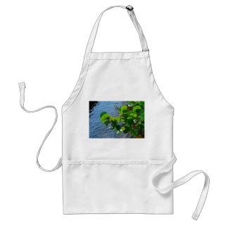 sea grape leaves over river plant florida nature adult apron