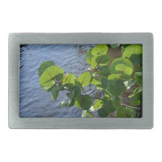 sea grape leaves over river plant florida nature rectangular belt buckle
