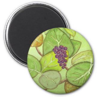 Sea Grapes Magnet