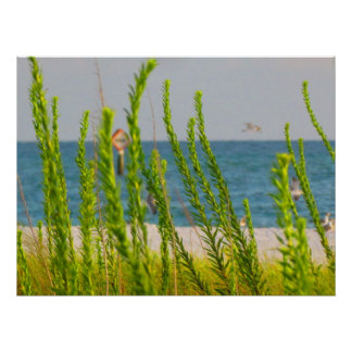 Sea Grasses 2 Posters