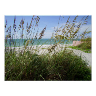 Sea Grasses Posters