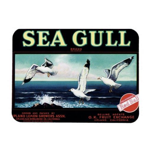 """Sea Gull"" Brand  Magnet"