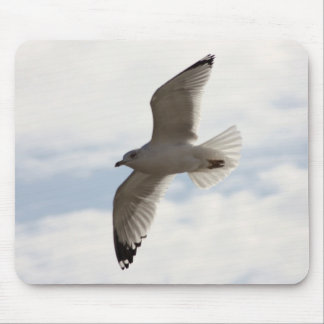 Sea gull flying high in the air mouse pad