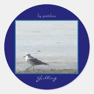 "Sea Gull ""Gulling"" Stickers"