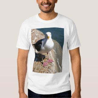 Sea Gull, Morro Bay, California T Shirt
