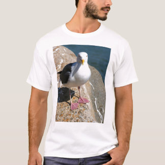 Sea Gull, Morro Bay, California T-Shirt