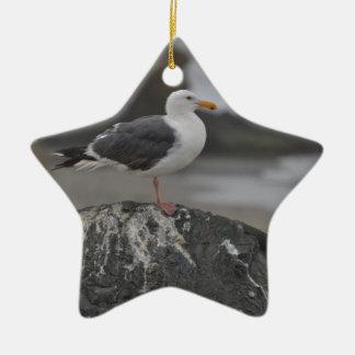 sea gull on rock at Cambria, California Christmas Tree Ornaments