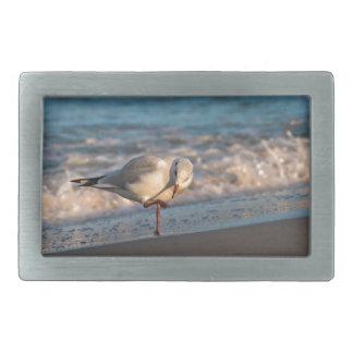 Sea gull on shore of the Baltic Sea Rectangular Belt Buckles