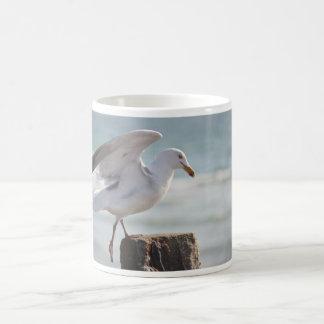 Sea gull photography mug