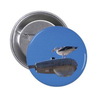 Sea Gull Pinback Button
