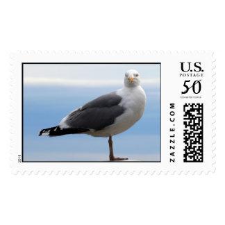 Sea Gull Postage
