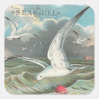 Sea Gull Square Sticker