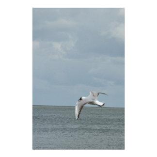 Sea gull stationery