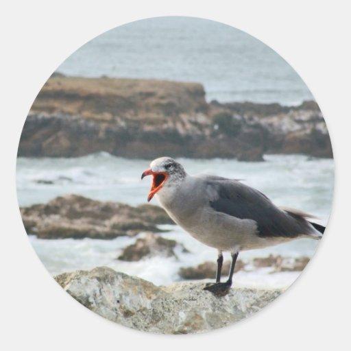 Sea Gull Stickers