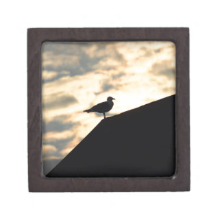 Sea Gull Sunset Gift Box