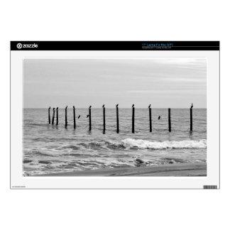 "sea gulls at beach skin for 17"" laptop"