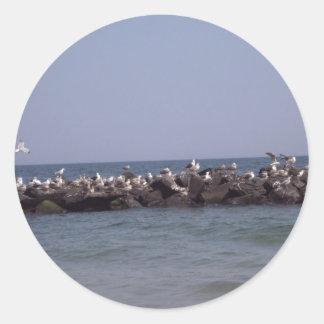Sea Gulls Classic Round Sticker