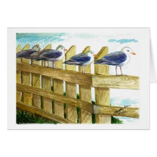 Sea gulls in a row greeting card