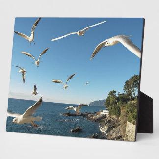Sea Gulls In Flight Plaque