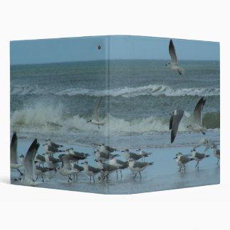 Sea gulls Ocean Beach meeting Binder