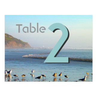 Sea gulls Table Card Number Postcard