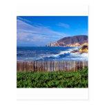 Sea Half Moon Bay California Postcard