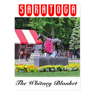 Sea Hero & The Whitney Blanket of Roses Postcard