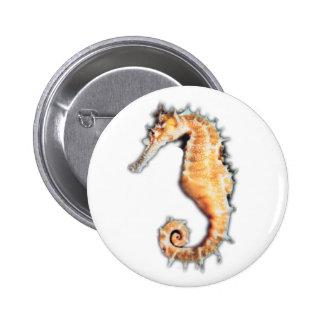 Sea horse button
