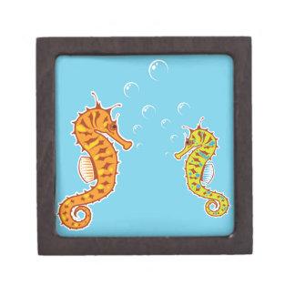 Sea Horse color Jewelry Box
