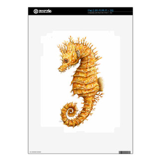 Sea horse Hippocampus hippocampus Decal For iPad 2