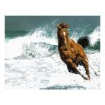 Sea horse letterhead