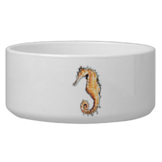 Sea horse Pet Bowl (2) sizes