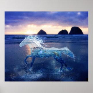 Sea Horse Poster