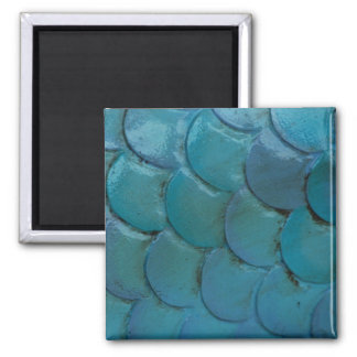 Sea-Horse Scales Magnet
