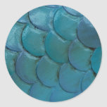 Sea-Horse Scales Sticker